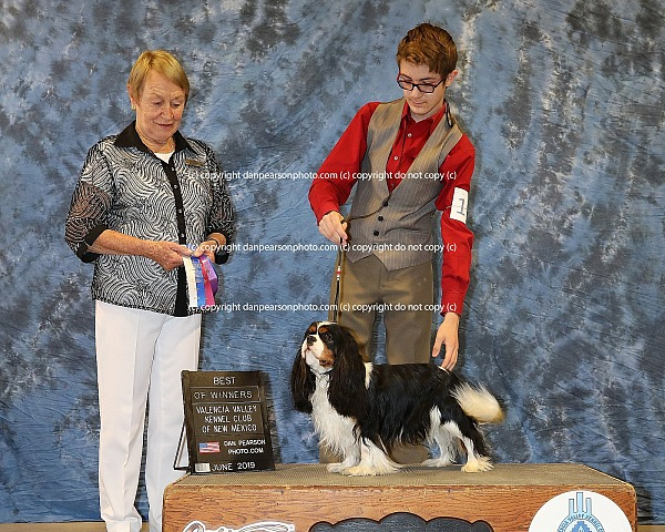 Valencia Valley Kennel Club (Show 3) Sunday May 9, 2019